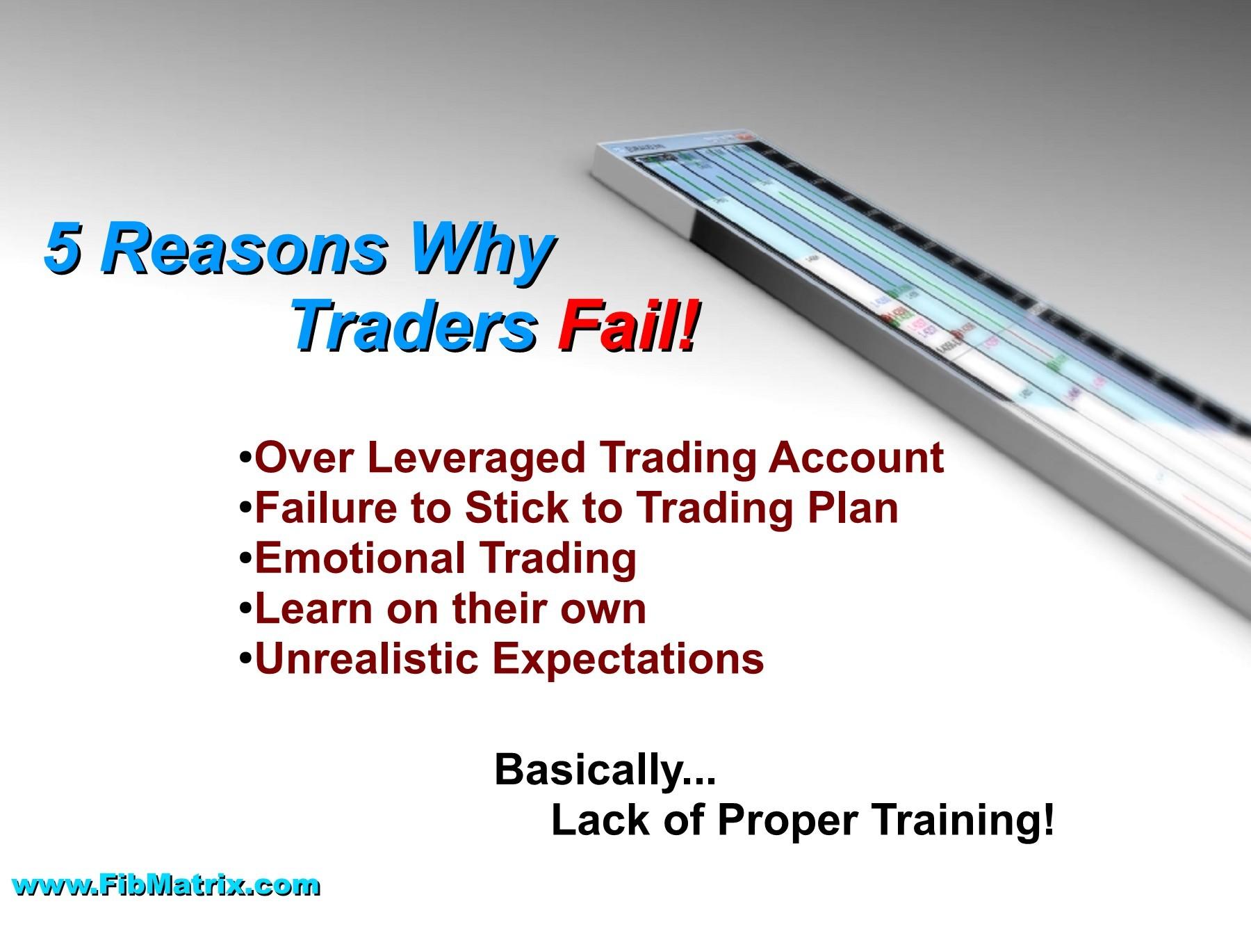 skara coin forex day trading software
